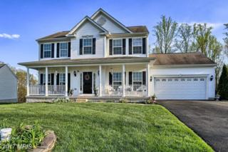 220 Flintstone Drive, North East, MD 21901 (#CC9935836) :: Pearson Smith Realty