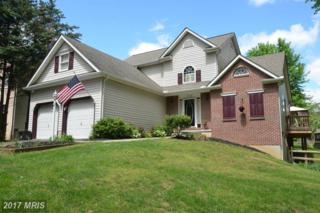 21 Captains View, Elkton, MD 21921 (#CC9937300) :: Pearson Smith Realty