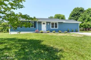 264 Peppermint Drive, Port Deposit, MD 21904 (#CC9937331) :: Pearson Smith Realty