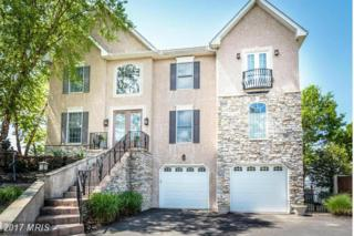 5409 Turkey Point Road, North East, MD 21901 (#CC9938617) :: Pearson Smith Realty