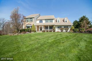 70 Bradley Court, Elkton, MD 21921 (#CC9940031) :: Pearson Smith Realty