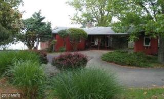 5347 Turkey Point Road, North East, MD 21901 (#CC9940730) :: Pearson Smith Realty