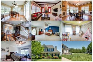 70 Harford View Drive, Port Deposit, MD 21904 (#CC9942151) :: Pearson Smith Realty
