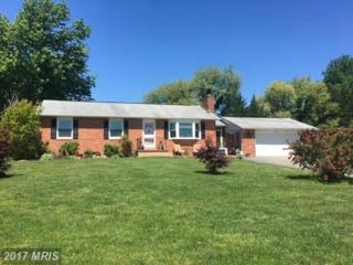 87 Russell Road, Elkton, MD 21921 (#CC9942388) :: Pearson Smith Realty