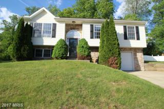 408 Melbourne Boulevard, Elkton, MD 21921 (#CC9942699) :: Pearson Smith Realty