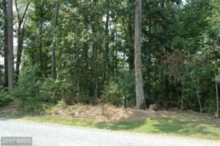 Forest Lane, Chesapeake City, MD 21915 (#CC9944008) :: Pearson Smith Realty