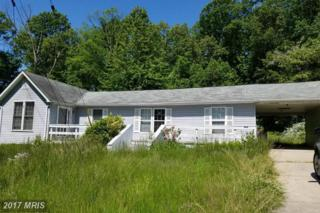 468 Chesapeake Road, Charlestown, MD 21914 (#CC9948934) :: Pearson Smith Realty