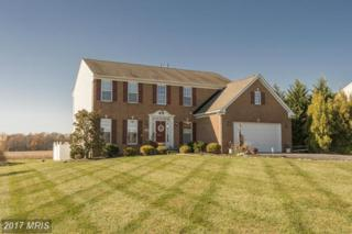 11 Manor Circle, Elkton, MD 21921 (#CC9952574) :: Pearson Smith Realty