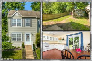 40 Sycamore Drive, North East, MD 21901 (#CC9954992) :: Pearson Smith Realty