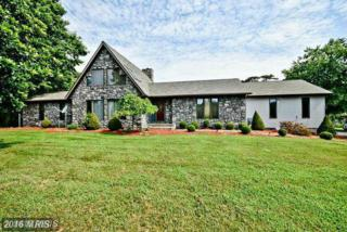 13600 Waverly Point Road, Newburg, MD 20664 (#CH9822856) :: Pearson Smith Realty