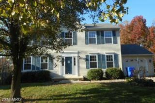 5608 Pinfish Court, Waldorf, MD 20603 (#CH9831944) :: Pearson Smith Realty