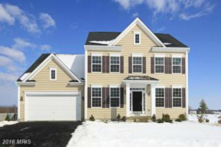 6823 Mccormick Drive, Bryans Road, MD 20616 (#CH9832785) :: Pearson Smith Realty
