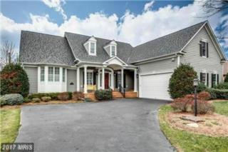 11480 Mohawk Court, Issue, MD 20645 (#CH9838063) :: Pearson Smith Realty