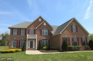 6945 Olive Damsel Court, Hughesville, MD 20637 (#CH9839312) :: Pearson Smith Realty