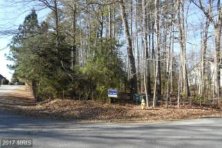 14790 Mohawk Drive, Swan Point, MD 20645 (#CH9847113) :: Pearson Smith Realty
