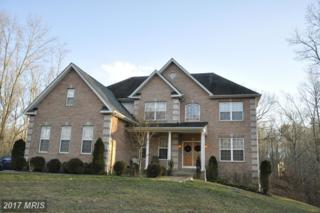 15152 Robbers Roost Court, Waldorf, MD 20601 (#CH9851711) :: Pearson Smith Realty