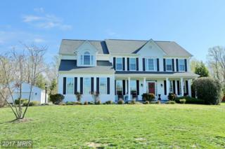 6915 Olive Damsel Court, Hughesville, MD 20637 (#CH9851792) :: Pearson Smith Realty