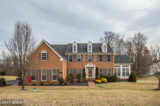 5518 Notched Beak Court, Waldorf, MD 20601 (#CH9856538) :: Pearson Smith Realty