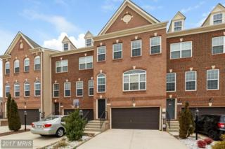 11699 Outlaw Gap Place, Waldorf, MD 20602 (#CH9857690) :: LoCoMusings