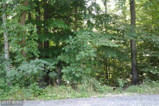 6510 Patuxent  Woods Lane, Hughesville, MD 20637 (#CH9865173) :: Pearson Smith Realty