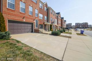 11720 Palm Desert Place, Waldorf, MD 20602 (#CH9866621) :: Pearson Smith Realty