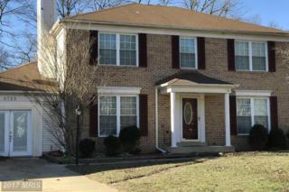 6723 Mink Court, Waldorf, MD 20603 (#CH9868519) :: Pearson Smith Realty