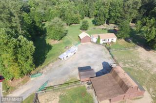 9855 Lomax Road, Faulkner, MD 20632 (#CH9868900) :: Pearson Smith Realty