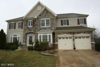 5156 Squawroot Court, Indian Head, MD 20640 (#CH9884037) :: LoCoMusings