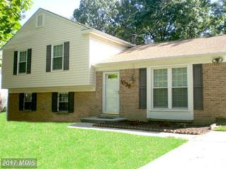 1038 Bannister Circle, Waldorf, MD 20602 (#CH9895159) :: LoCoMusings