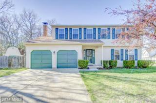 12214 Holm Oak Drive, Waldorf, MD 20601 (#CH9896005) :: Pearson Smith Realty