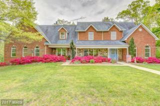 7025 Colonial Lane, Hughesville, MD 20637 (#CH9925229) :: A-K Real Estate