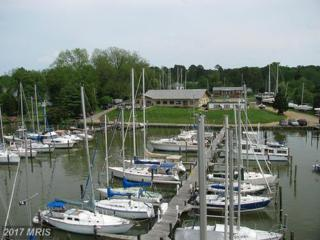 12364 Neale Sound Drive, Cobb Island, MD 20625 (#CH9927796) :: Pearson Smith Realty