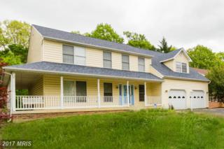 2319 Knotweed Court, Waldorf, MD 20603 (#CH9928895) :: Pearson Smith Realty