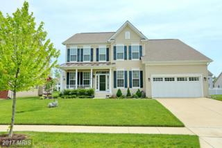3628 Curtin Drive, White Plains, MD 20695 (#CH9930461) :: Pearson Smith Realty