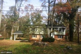 7336 Mary Drive, Port Tobacco, MD 20677 (#CH9934328) :: Pearson Smith Realty
