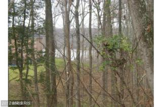 Chapel Point Road, Port Tobacco, MD 20677 (#CH9937753) :: Pearson Smith Realty