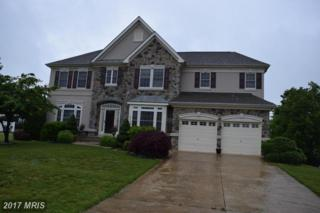 5156 Squawroot Court, Indian Head, MD 20640 (#CH9949585) :: Pearson Smith Realty