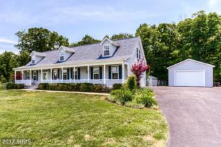 1665 Green Manor Drive, Nanjemoy, MD 20662 (#CH9956911) :: A-K Real Estate