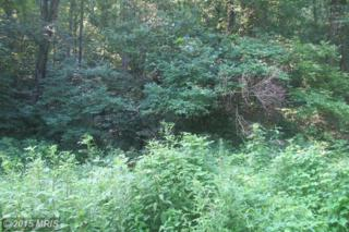 0 Howellsville Road, Boyce, VA 22620 (#CL8705235) :: Pearson Smith Realty