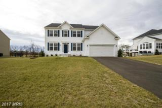 779 Mcguire Circle, Berryville, VA 22611 (#CL9854353) :: Pearson Smith Realty