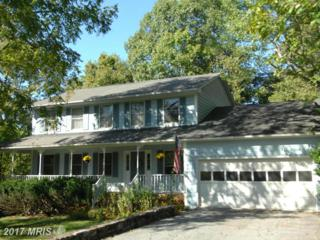 30 Colonial Lane, Millwood, VA 22646 (#CL9916977) :: Pearson Smith Realty
