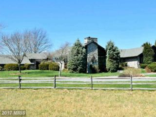 643 Lander Lane, Berryville, VA 22611 (#CL9923679) :: Pearson Smith Realty