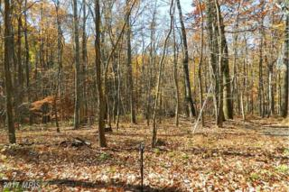 Cliff Lane, Bluemont, VA 20135 (#CL9941826) :: Pearson Smith Realty