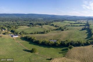 3531 Harry Byrd Highway, Berryville, VA 22611 (#CL9943584) :: Pearson Smith Realty
