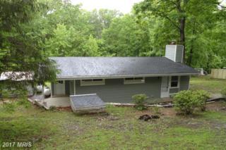 289 Honeysuckle Lane, Bluemont, VA 20135 (#CL9946068) :: Pearson Smith Realty