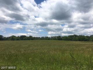 Cather Road, Berryville, VA 22611 (#CL9959387) :: Pearson Smith Realty
