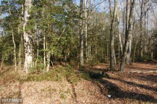 Liberty Road, Federalsburg, MD 21632 (#CM9538211) :: Pearson Smith Realty