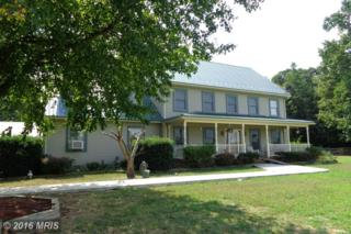 27745 Greenwood Road, Denton, MD 21629 (#CM9760882) :: Pearson Smith Realty