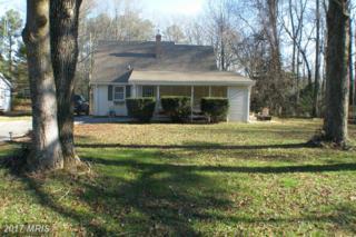 9349 Mike Street, Denton, MD 21629 (#CM9851627) :: Pearson Smith Realty