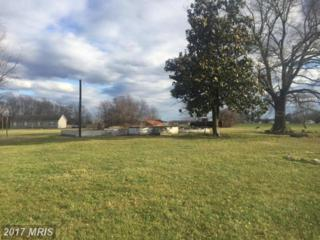 5169 Bethlehem Road, Preston, MD 21655 (#CM9855319) :: Pearson Smith Realty